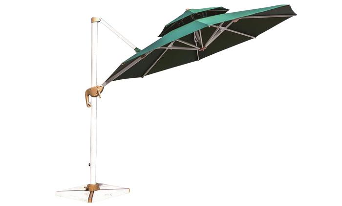 1091拉菲特氧化中罗马伞